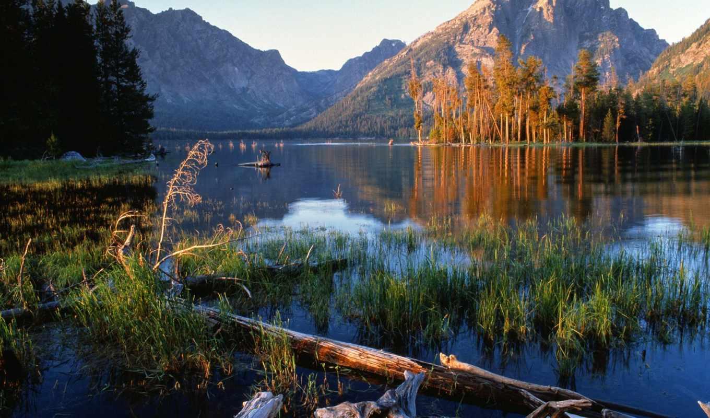 вайоминг, national, wyoming, park, флот, озеро, lodge, джексон, йеллоустоун, красивые,