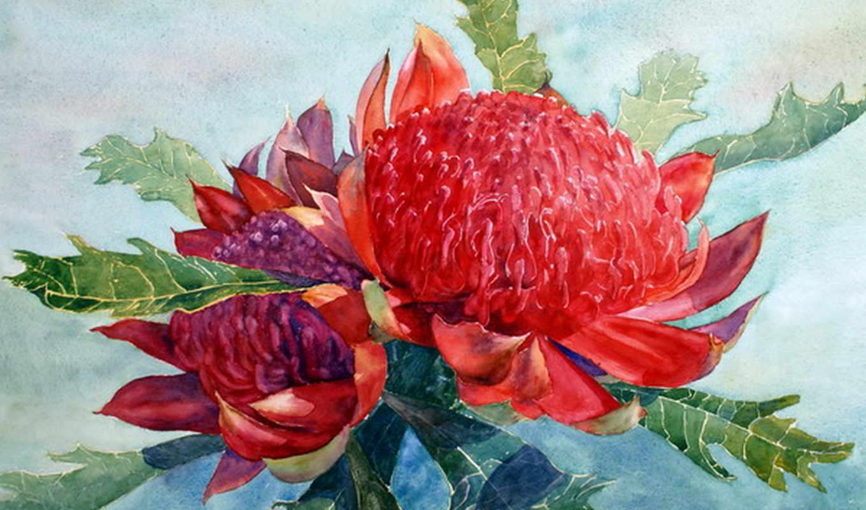 art, cartwright, joe, paintings, watercolor, flowers, watercolour,