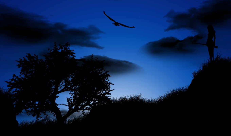 птица, ночь, небо, девушка, дерево,