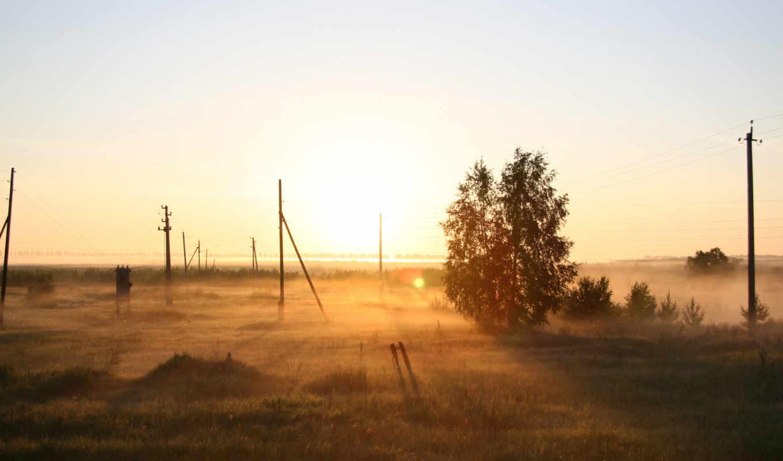 поле, рассвет, туман, утро, природа, дерево, россия, картинка,