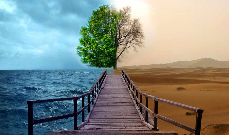судьбы, дорога, that, пустыня, fate, everything, freedom,