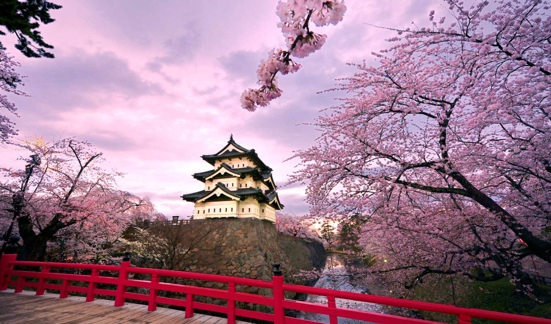 castle, hirosaki,