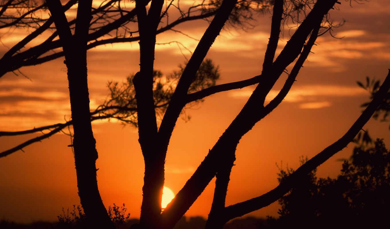 закат, картинка,