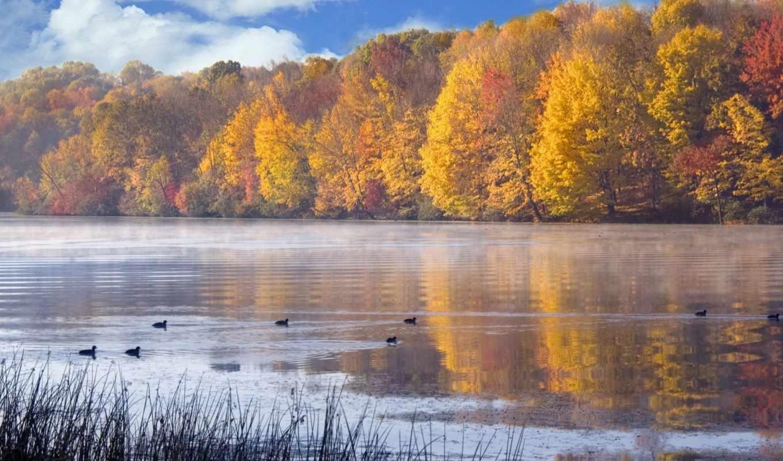 осень, природа, time, природы, года, landscape, обсуждение, russian, liveinternet, красивые, love,