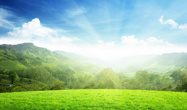 солнце, небо, утро, холмы, деревя, vesna, великой, небе, солнца, пляна,