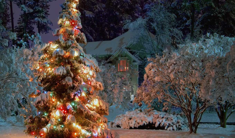 год, новый, елка, ёль, снег, деревья, дом, гирлянды, ночь, зима, праздники, праздник, рождество, новогодняя, нового, картинка, года, новогодние,