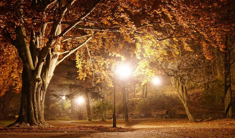 park, осень, romantic, картинка, дорога, вечер, природа, ночь, season, флот, пасть,