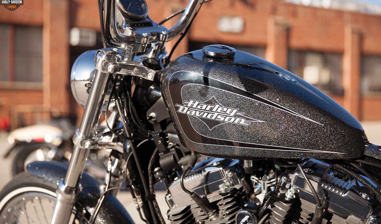 ,harley, davidson, seventy, sportster, мотоцикл,