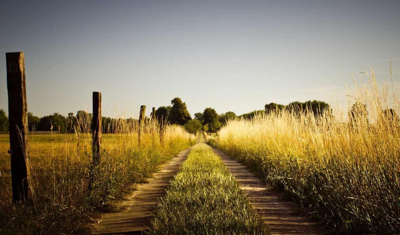 поле, дорога, summer, небо, забор, high, природа, сквозь, country,