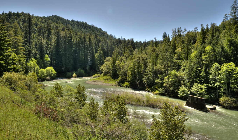 природа, горы, лес, широкоформатные, леса, реки, поля,
