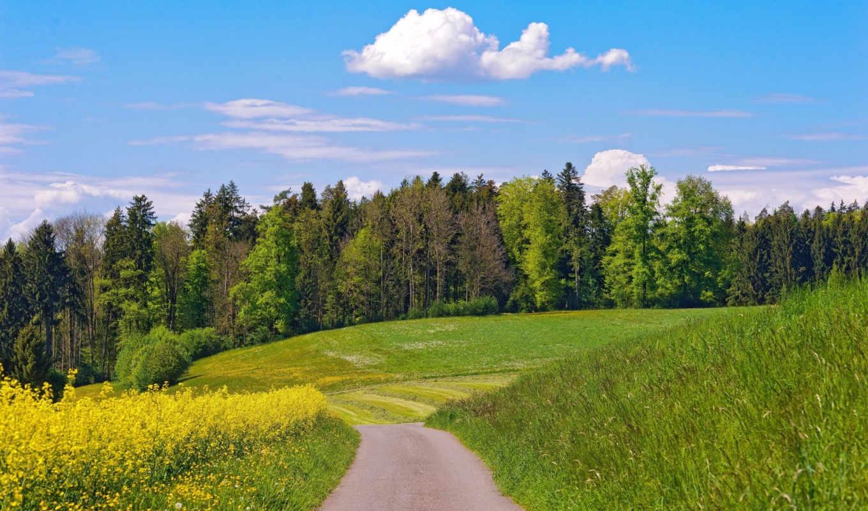 природа, облака, деревья, цветы, лес, лето, дорога, май, набор, большой, луг, завантажити, июль,