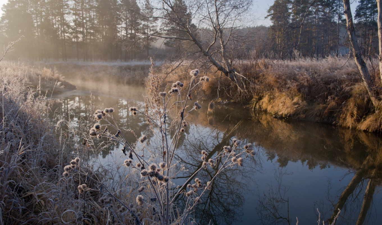 осень, река, иней, травы, утро,