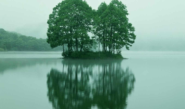 zakat, красивые, палки, ozero, моря, берег, елки, крест, подробнее,