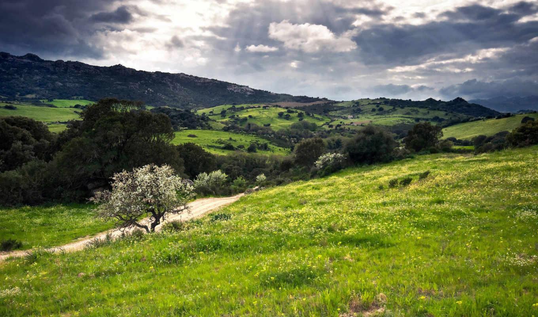 сардиния, италия, холмы, зелень, full, картинка,