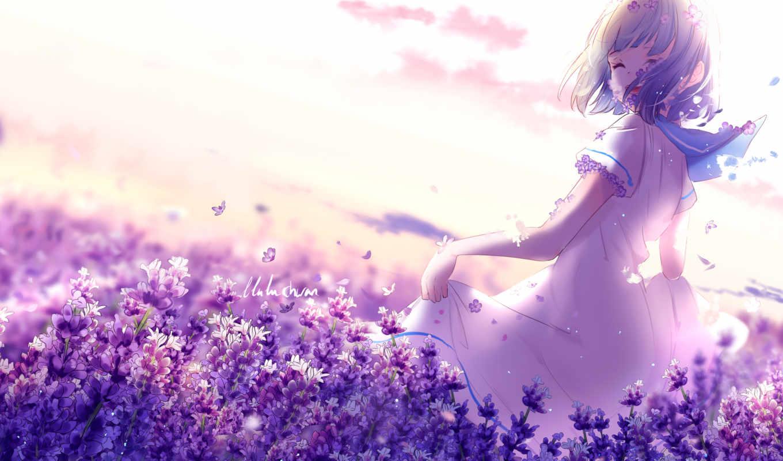 anime, lavender, purple, девушка, flowers, desktop, lavenders,