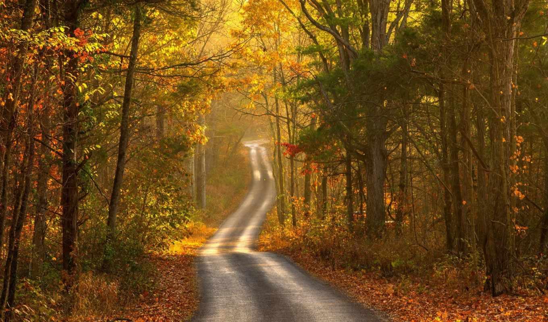 осень, landscape, дорога,