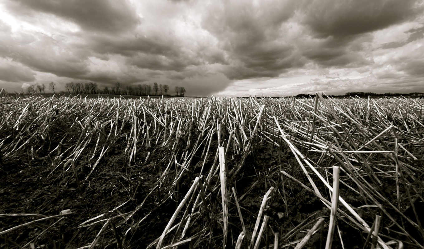 sky, dramatic, desktop, background, download, free, gray, monochrome, landscapes, nature, field,
