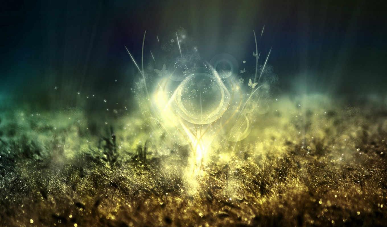 свет, бабочки, macro, sparkles, золото, абстракция, колоски, блеск, трава, красиво, desktop, datei,