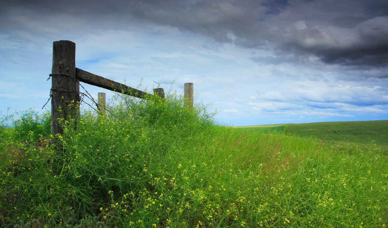 трава, небо, тучи, забор, картинка,