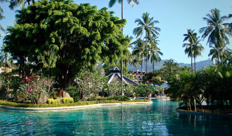 phuket, thailand, бассейны, парки, пальмы, картинка, desktop,