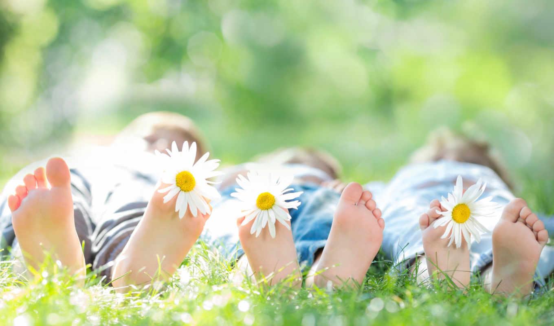 дети, цветы, ромашки, безмятежность