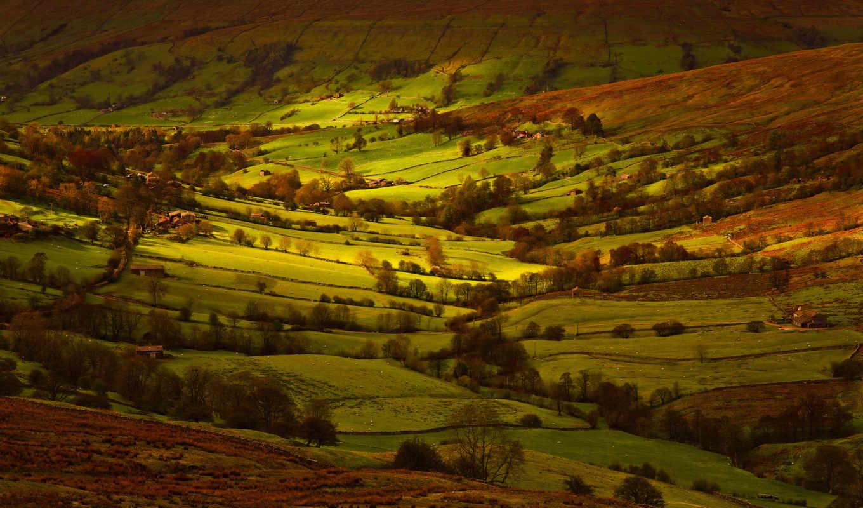англия, поля, свет, йоркшир, картинка,