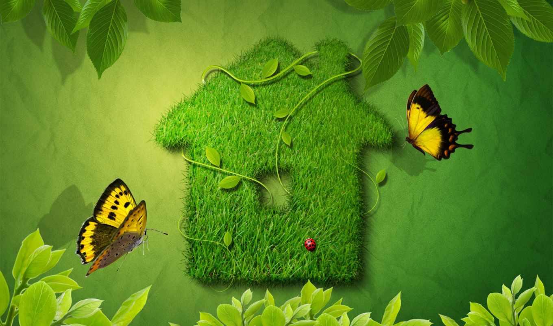 house, our, природа, композиция, эко, да, природы, графика,