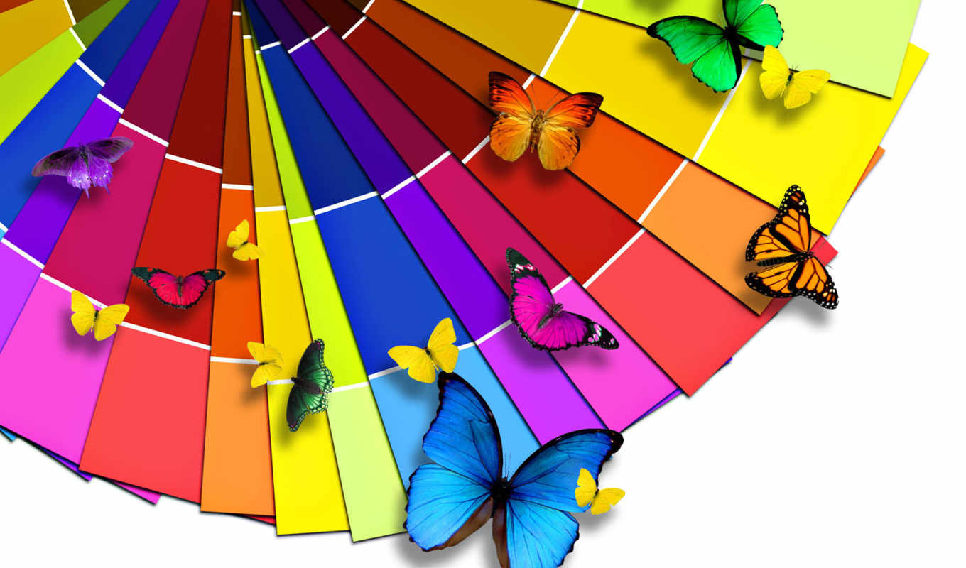 butterflies, color, palette, colorful, , insects, best, designer, hintergrundbilder, background, desktop, fondos, fonds, bright, free, this, colores,