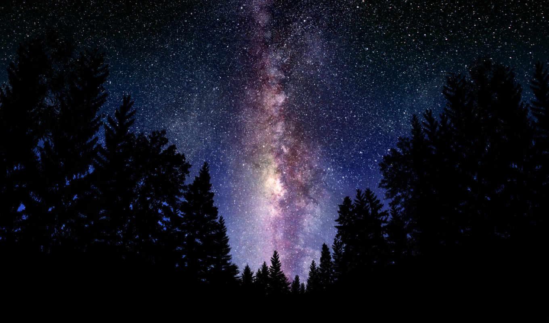 milky, way, bg, galaxy, небо, ночь, пейзажи, космос, звезды, лес, that, similar,