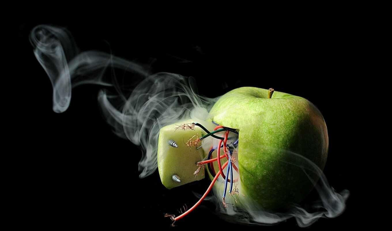 apple, волосы, провод, prank, юмор