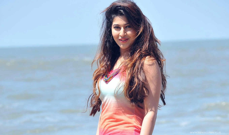 sonarika, bhadoria, актриса, pretty, saree, her,