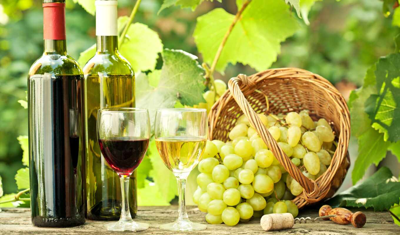виноград, натюрморт, вино, вина, корзина, glass