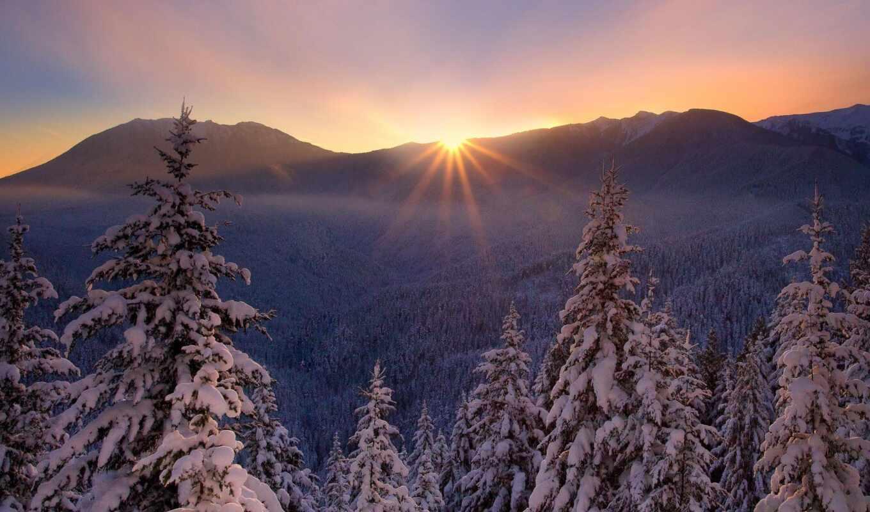 снег, winter, invierno, елка, paisaje, fate, природа, zima, идея
