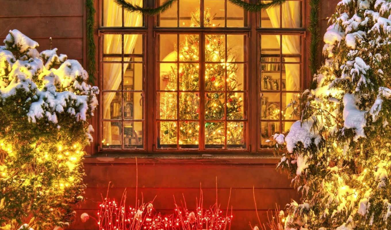 праздник, елка, огоньки, год, новогодние, новый, категория, сюжеты,