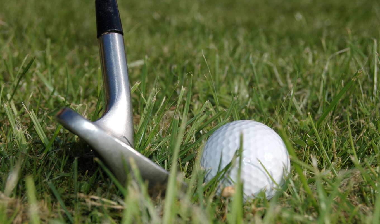 golf, clubs, дольки, мяч, club,