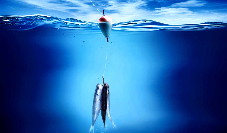 природа, разное, все, ipad, со, изображение, water, картинок, изображения, похожие, рыбка, выберите, picsfab, фабрика, fishing, ловись, рыбалки, рыболовную, тематику, поплавок,