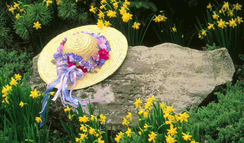 шляпа, цветы, камень, кентуки, луисвиль, фотообои,