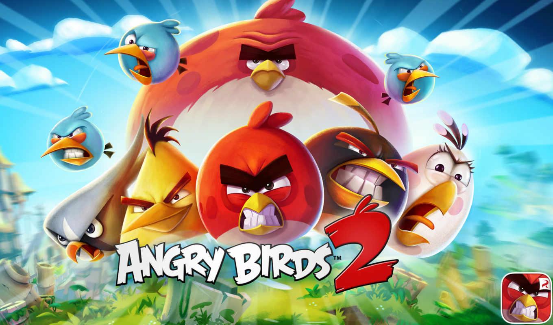 angry, birds, июл, rovio, android, nexus,