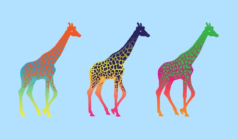 поп, арт, жираф, разноцветный, минимализм, giraffe, картинка,