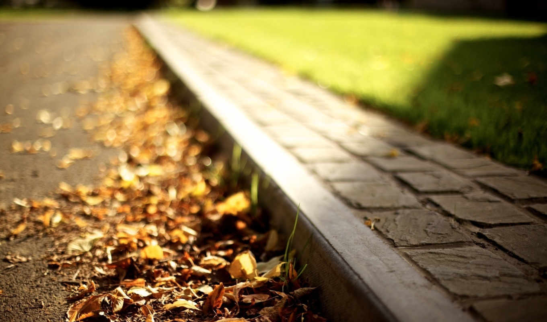 autumn, òòîªçà, leaves, road, curb,
