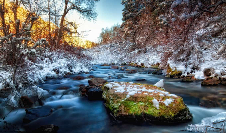 снег, картинка, весна, коллекция,