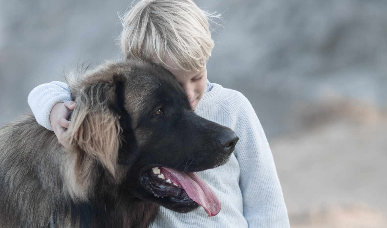 ребенок, собака, хороший, april, narrow, доброта, boy, shabakin, друг