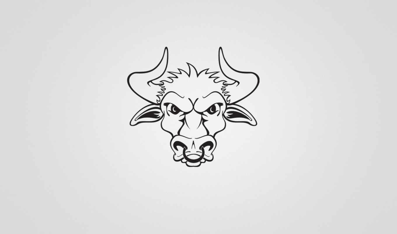 bull,