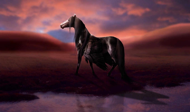 лошадь, пегас, пегас, крылья, белая, blue, water,