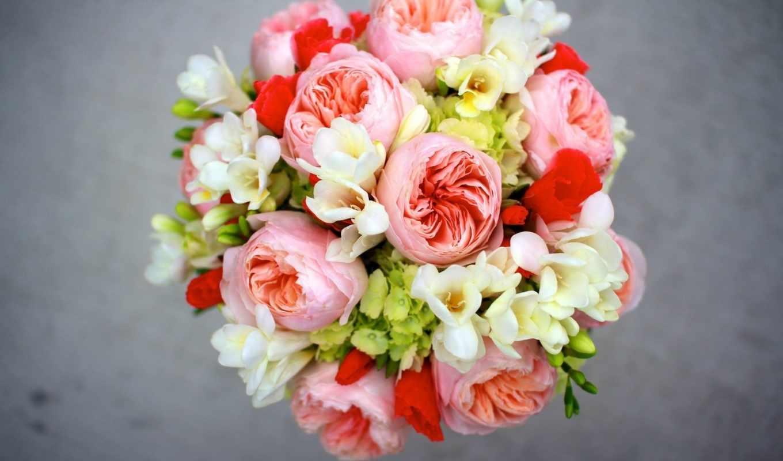 cvety, пионы, букет, фрезии, просмотреть, гортензия, розы,