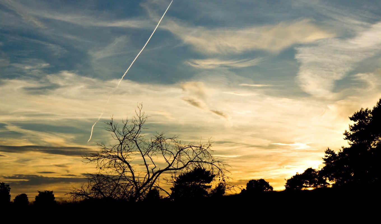 небо, взгляд, самолёт, вечернее, silhouettes, пара, ночь, вечер, dance,