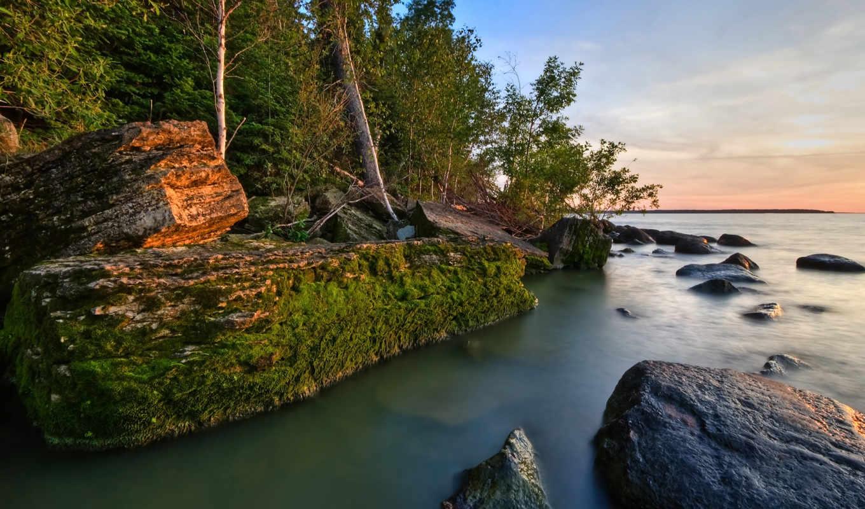 природа, лис, water, природы, красивые, лес, сайт,