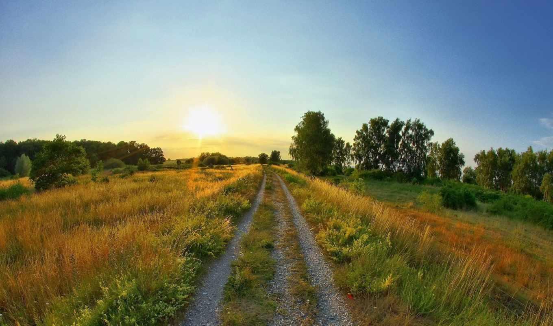 дорога, восход, солнце, лето, поляна, поле,