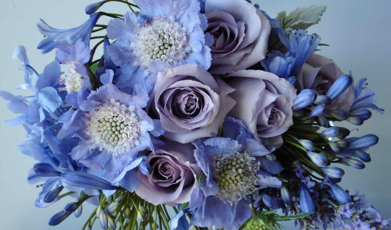 цветы, букет, красивые, полевые, розы,