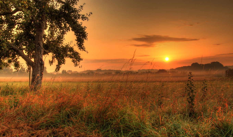 sun, качестве, высоком, закат, небо, марта, рассветы,